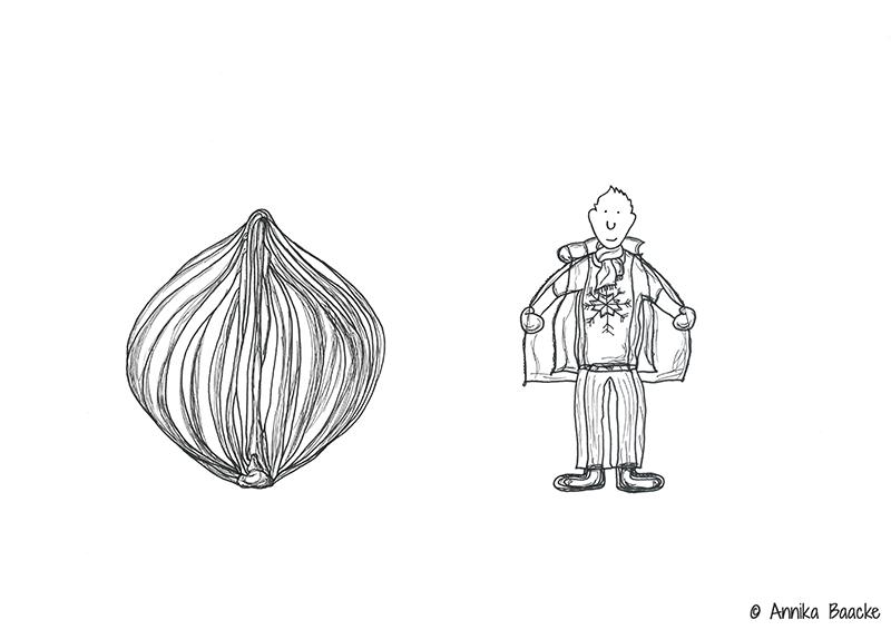 """Zeichnung von einer Zwiebel und einer Comicfigur im """"Zwiebellook"""" - Copyright: Annika Baacke"""